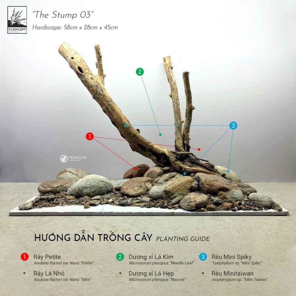 The Stump 03 - Femolay