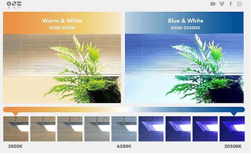 Flat one vs Flat one+